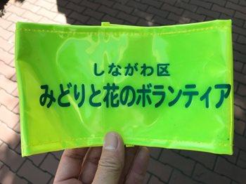 みどりと花212183 (2)
