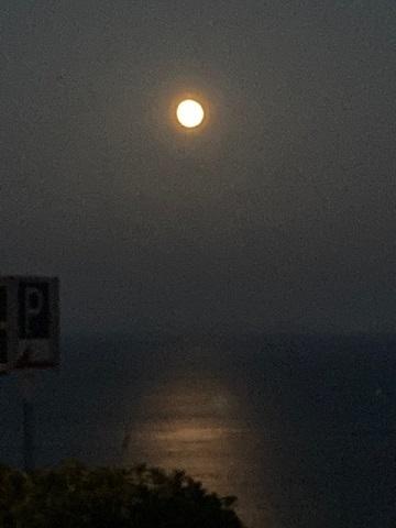海面テラス月