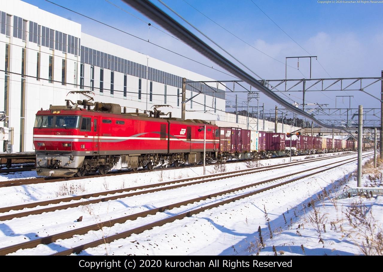 ESF_1021-2.jpg