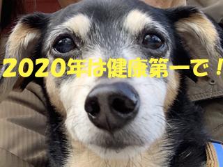 2019120601.jpg