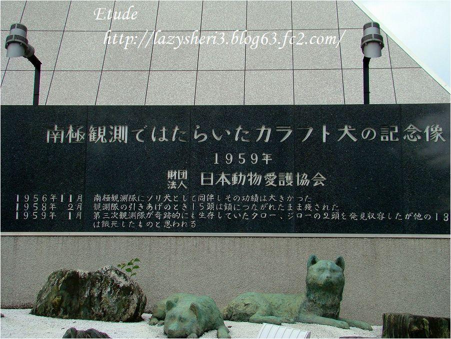 20201206-6.jpg