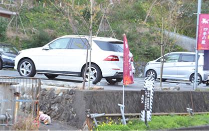 20200211河津桜祭り (1)
