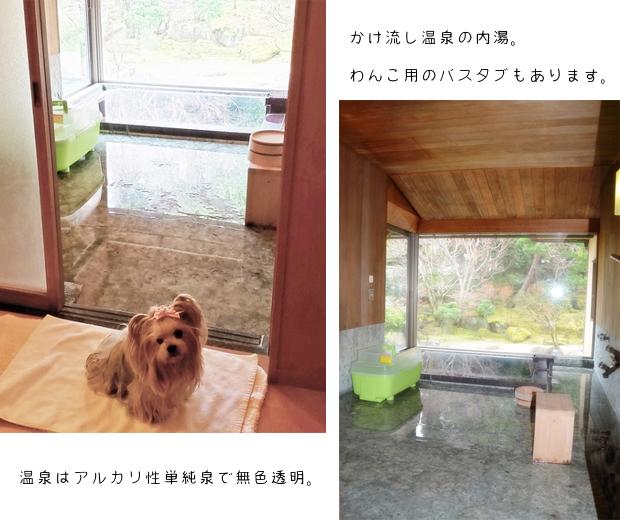 2020年02月21日三養荘③ ⑨ お風呂とりれら (3)