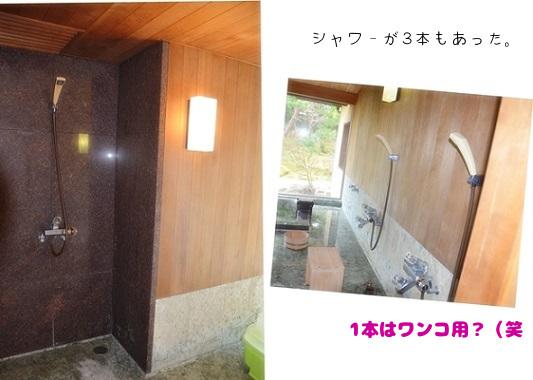 2020年02月21日三養荘③ ⑨お風呂にシャワーが3本 (1)