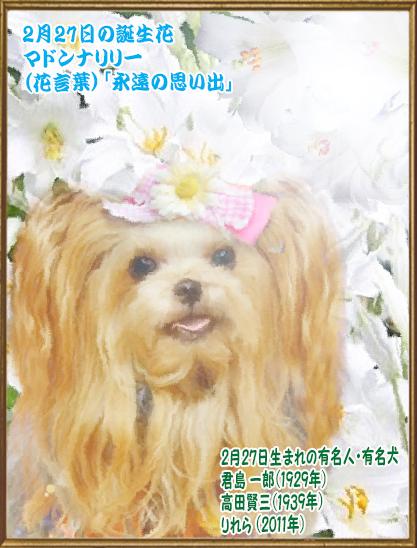 00誕生日 2020年02月27日りれらちゃん(blog)9歳