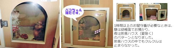 2012年09月01日防音ハウスを買う (3)openingsize