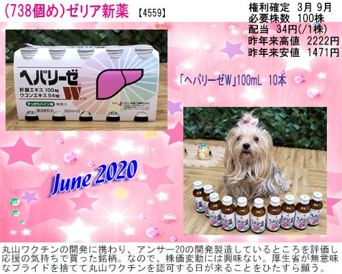 (738)2020年06月到着 ゼリア新薬