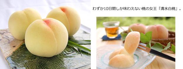 わずか10日間しか味わえない桃の女王「清水白桃」