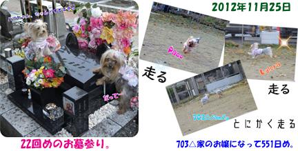 2012年11月25日お墓参り#22(敷石チェンジ) openingsize