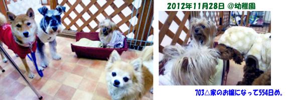2012年11月28日幼稚園りれら71日め&パコ66日め (9)openingsize