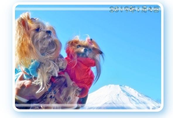 20200920⑫富士山とリーパコ