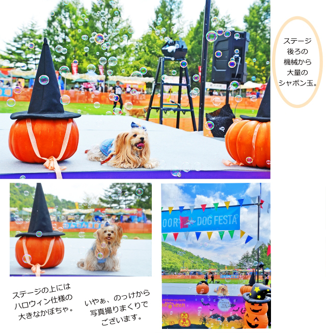 ⑦シャボン玉とかぼちゃとりれら20200921ar(IMGE)