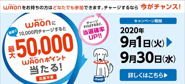 2020091500300176f.jpg