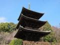 国宝三重塔