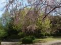 伏見城公園3