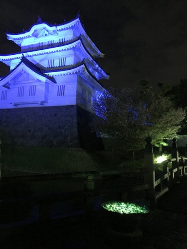 210403_花手水ライトアップ