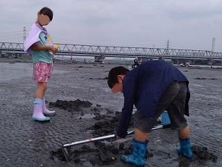 ブログ2 0607マテ貝 (3)