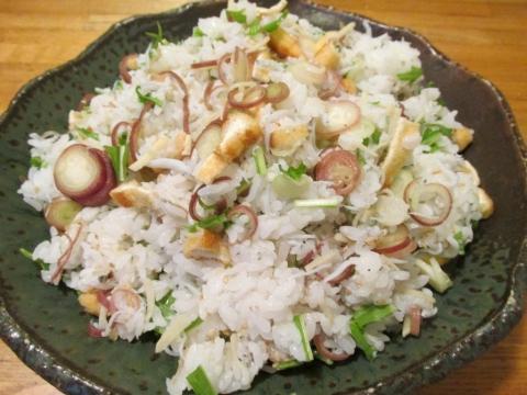 シラスと茗荷のまぜ寿司1