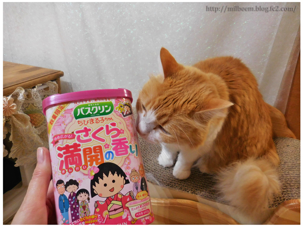 2020sakuramonotomilray_09.jpg