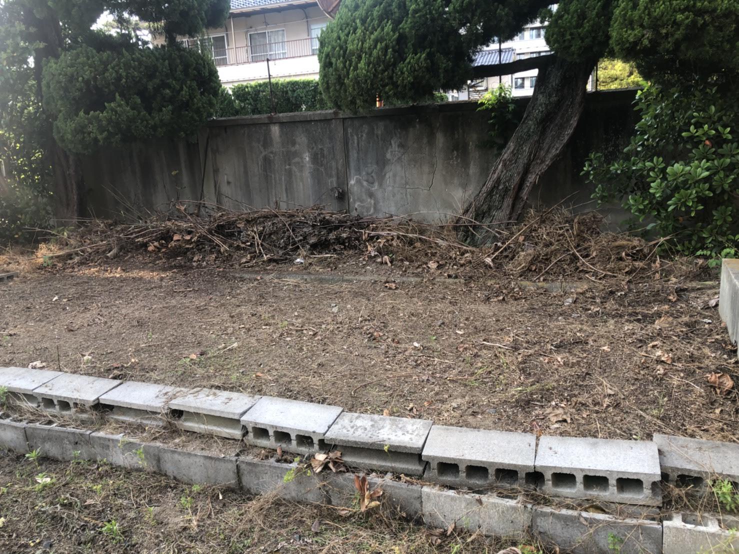 0604畑作り(3)