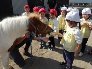 乗馬体験○ (77)