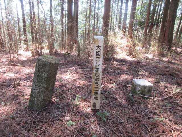 IMG0044JPG戸谷ケ岳三角点