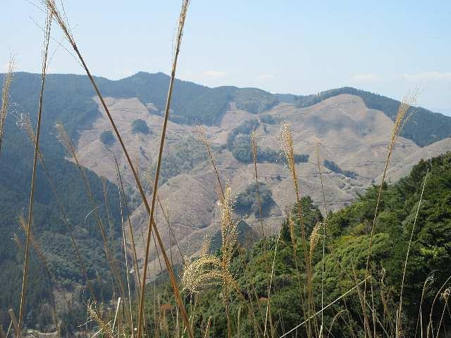 IMG0085JPG西側に先日登った戸谷ケ岳