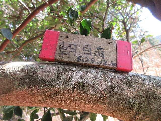 IMG0087JPG標識です