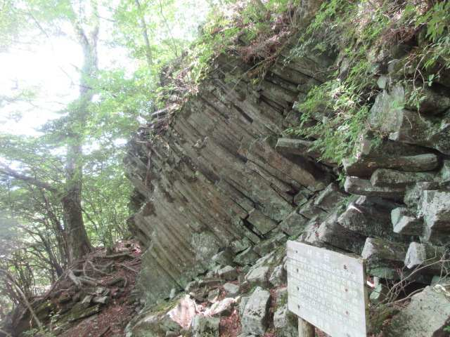 IMG0110JPG材木岩