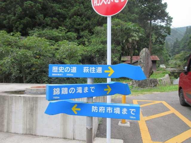 IMG0001JPG錦鶏の滝コースで