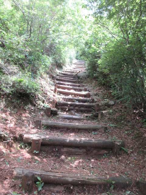 IMG0104JPG山頂下の階段