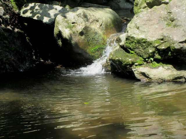 IMG0044JPG汗を流した渓流