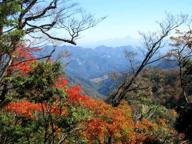 IMG0043JPG紅葉と犬ケ岳山塊