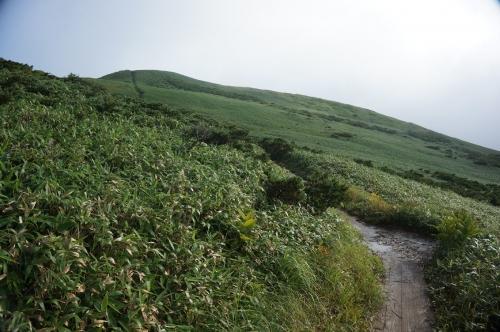 平標山写真13