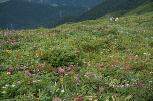 平標山写真33