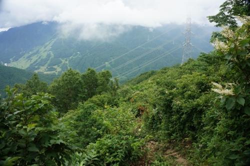平標山写真41