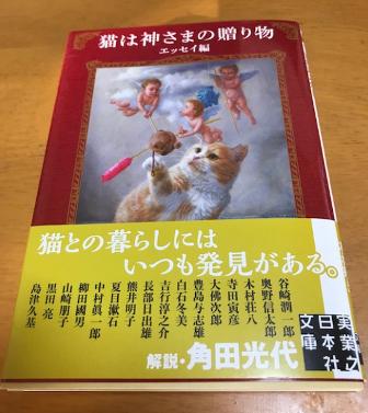 猫は神様の贈り物