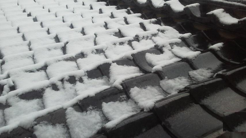 【2020年】初雪
