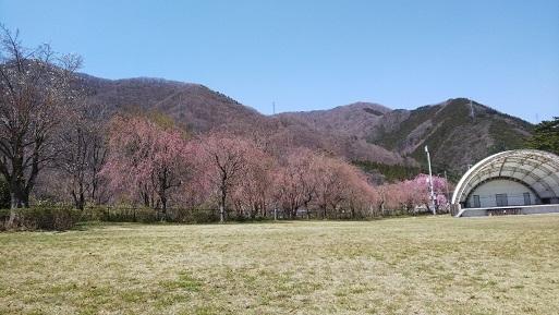 kinugawa18.jpg