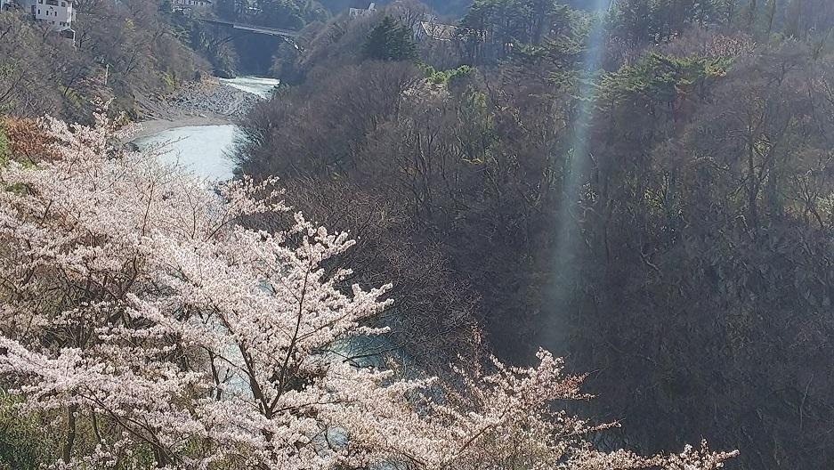 kinugawa7.jpg