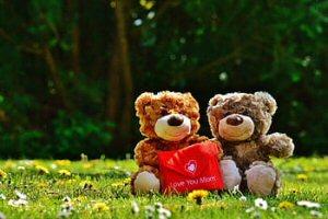 00a 300 bear_cubs picnic