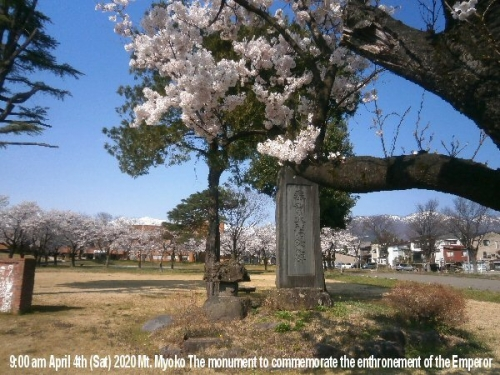 01b 600 20200404 02 Cherry_blossonms in Full Monument