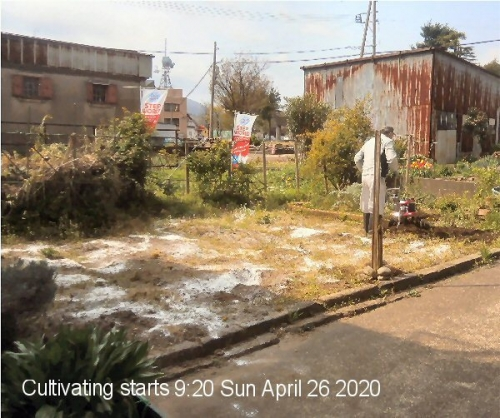 01f 600 200426 0920 Cultivating started by Uchida