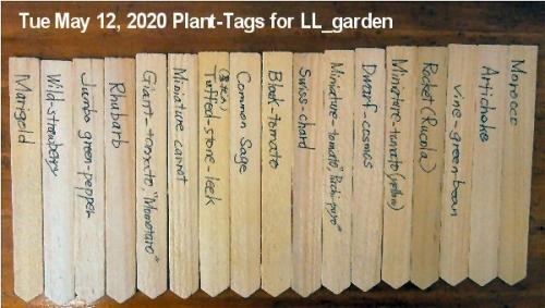 01ca 600 plant-tags