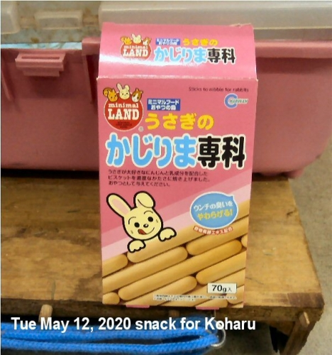 01db 600 snack for Koharu