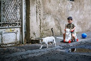09a 300 excuse us boy and cat