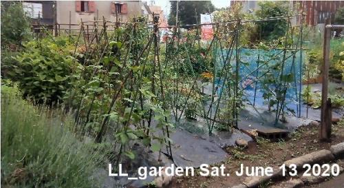 01b 600 200613 LL_garden overview