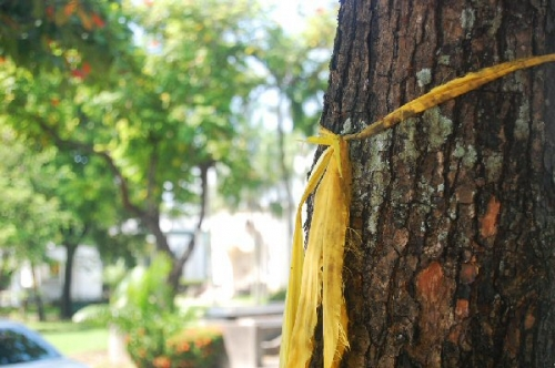 04a 600 a yellow ribbon round an oak tree from Flickr