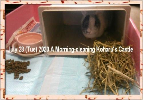 01c 600 20200728 a morning cleaning Koharu Castle