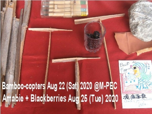 01b 600 20200822 Bamboocopters M_pec